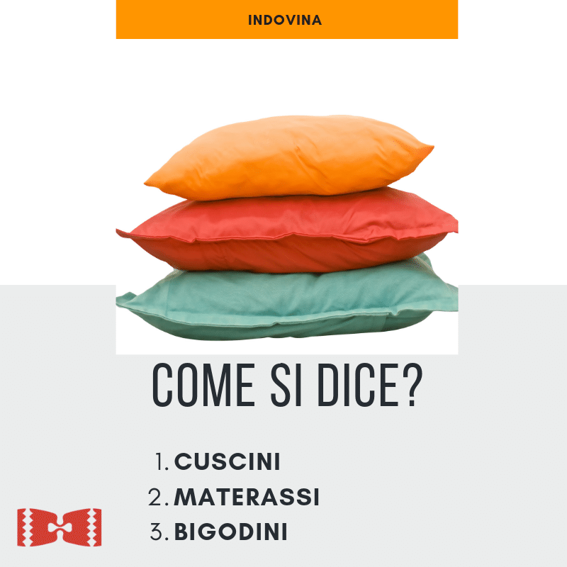 pillows in italian or cushions